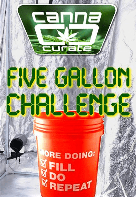 5 gallon bucket challenge